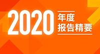 伟星新材2020年度报告精要
